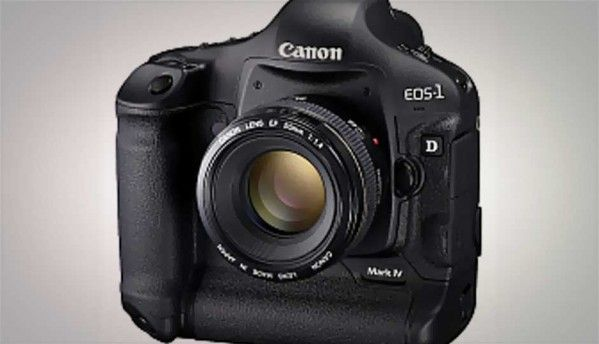 Canon EOS 1D Mark 4 - A quality crop, but full frames are cheaper
