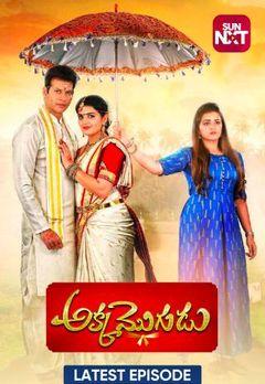Best Telugu Shows on Mx Player