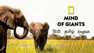 Mind of Giants