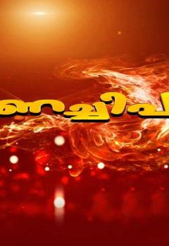 Ambarish Best Movies, TV Shows and Web Series List