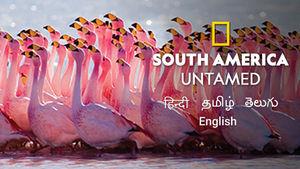 South America: Untamed