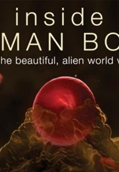 Best Documentary Shows on Prime Video