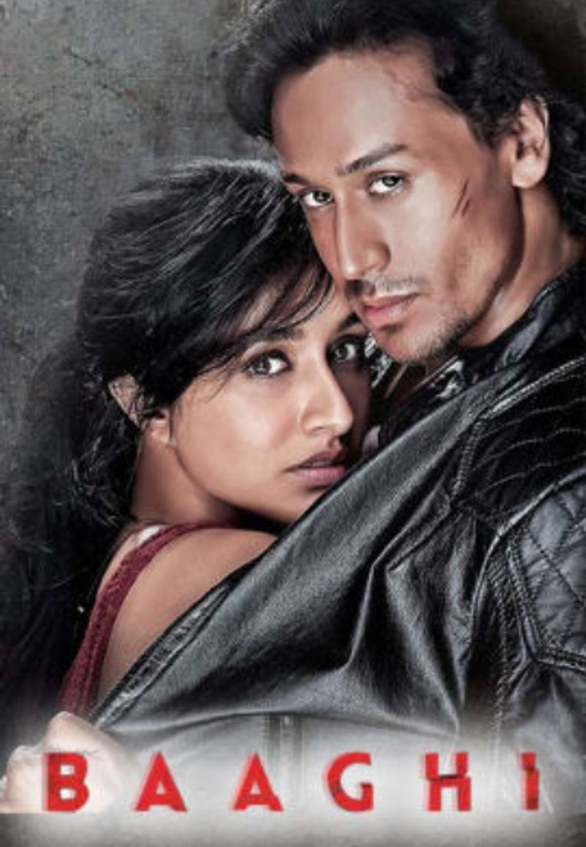 Baaghi: Rebels In Love