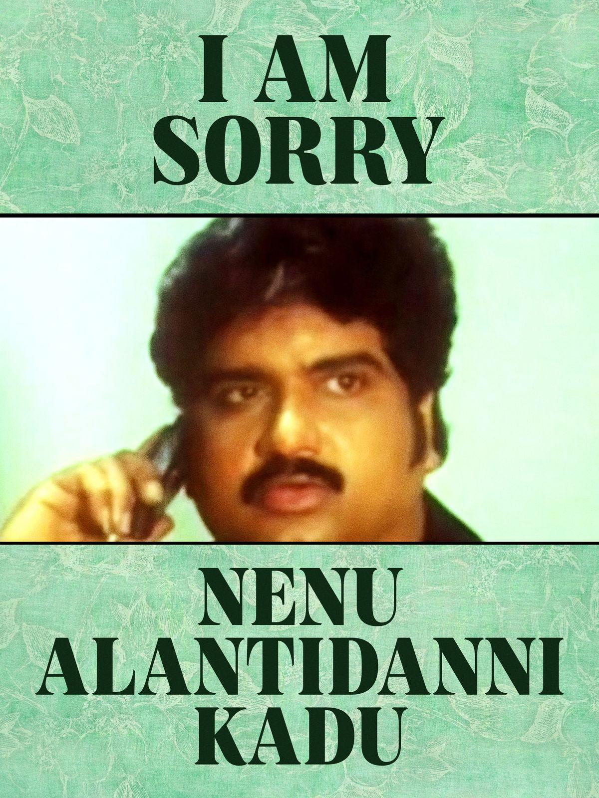 I Am Sorry Nenu Alantidanni Kadu