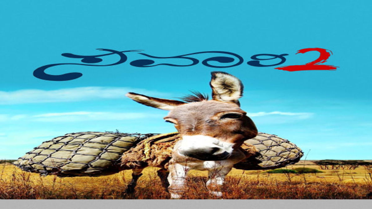 Karan Rao Best Movies, TV Shows and Web Series List