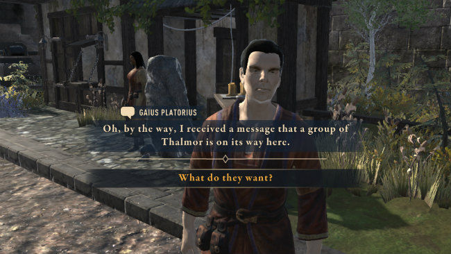 Elder Scrolls Blades gameplay