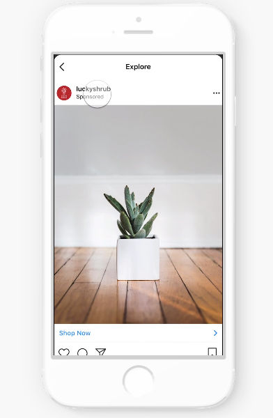 Instagram Advertisements In Explore Tab