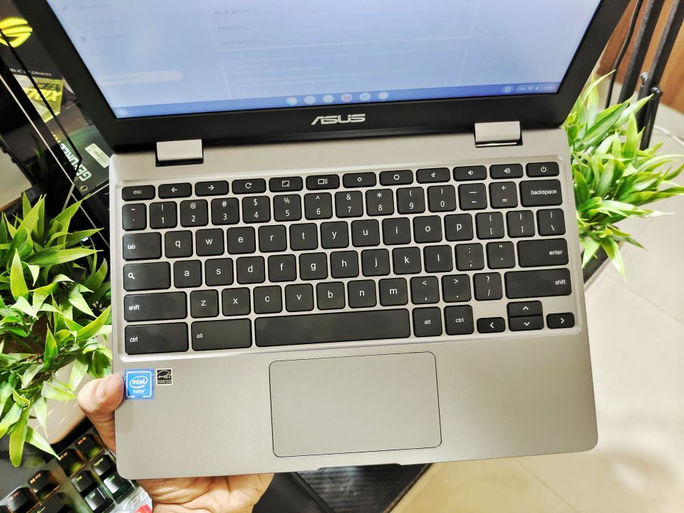 Chromebook C223 Keyboard and touchpad