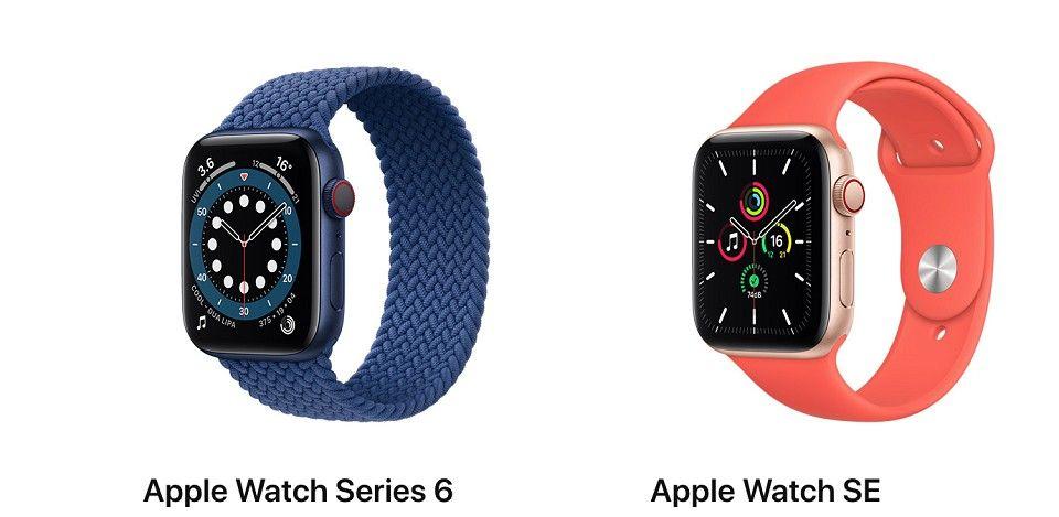 Aple Watch 6 Vs Apple Watch SE