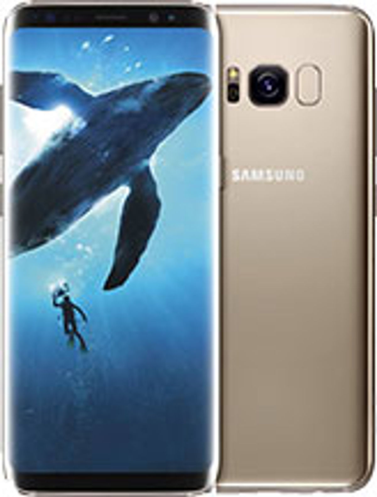 Best Samsung Phones in India September 2019, Latest