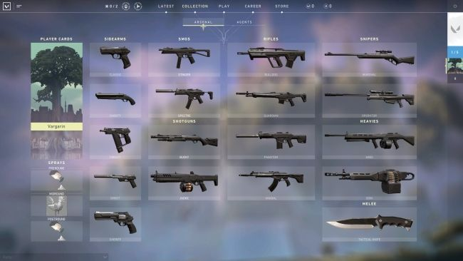 Valorant list of guns weapons shields