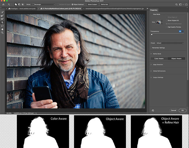 Adobe Photoshop has a one-click hair refinemnt tool that will automatically select the hair on a selected subject