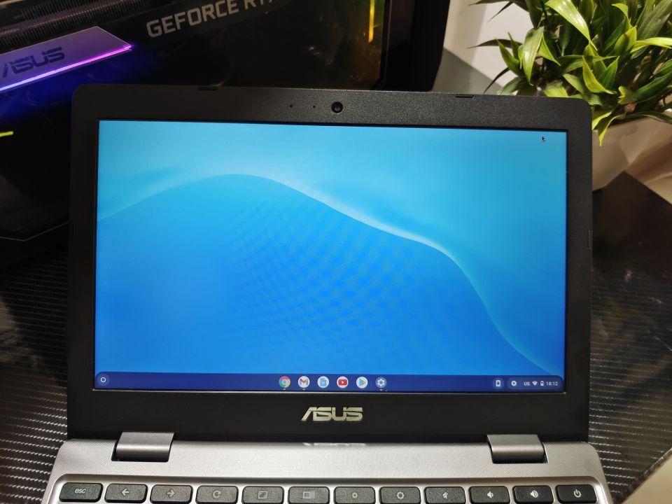 Chromebook C223 Display