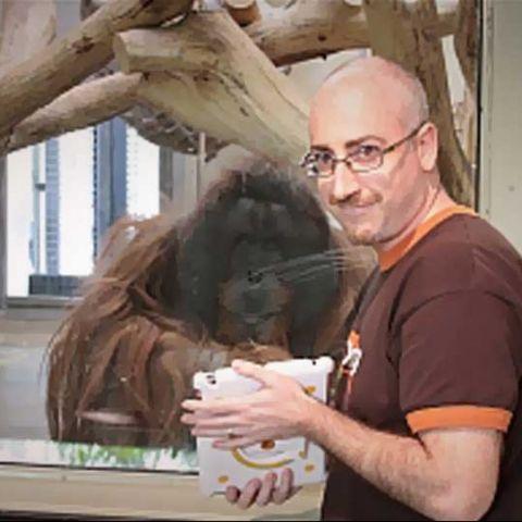 Apps for Apes: We speak with Orangutan Outreach initiative's Richard Zimmerman