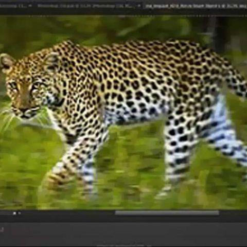 Photoshop CS6: Plenty of goodies for everyone