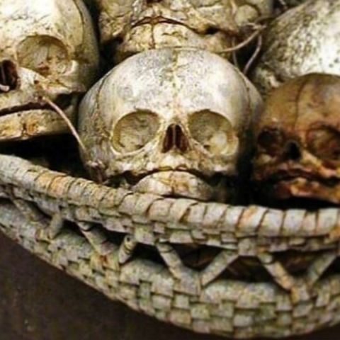 Skulls, foetuses and other human remains are being sold on Instagram!