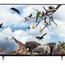 Compare Kevin 50 inches Smart Full HD LED TV vs Koryo 43 inches Full HD LED TV