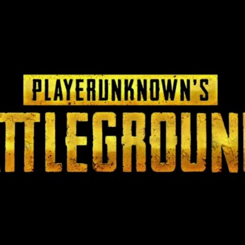 13 million cheating PUBG players banned from ever having chicken