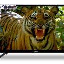Compare Maser 40 انچ Full HD LED TV  vs Amex 32 انچ Full HD LED TV