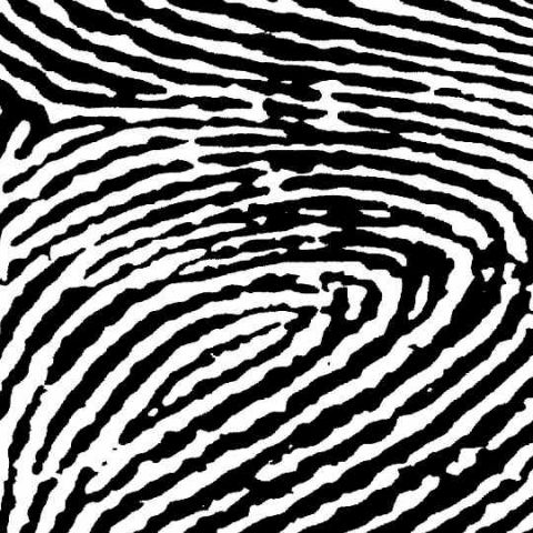 AI is now capable of faking fingerprints to gain unauthorised access