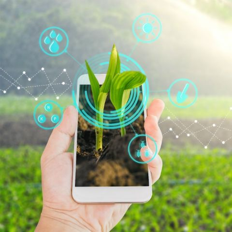 Earth Week: Here's a look at some apps that will help you become more environmentally friendly