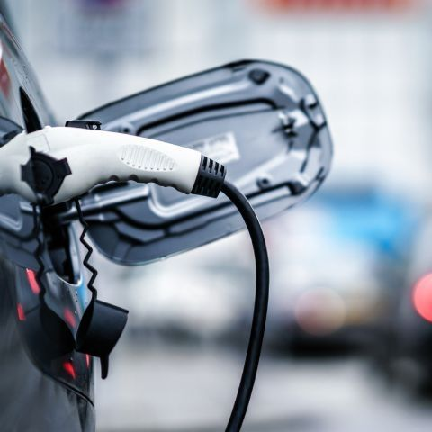 India to sell only electric vehicles after 2030: NITI Aayog