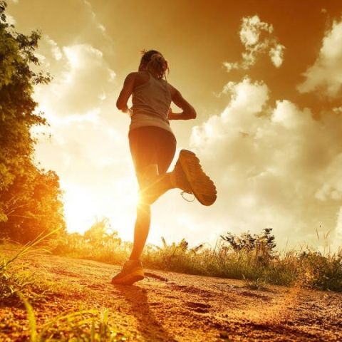 Top 10 apps to help you stay fit