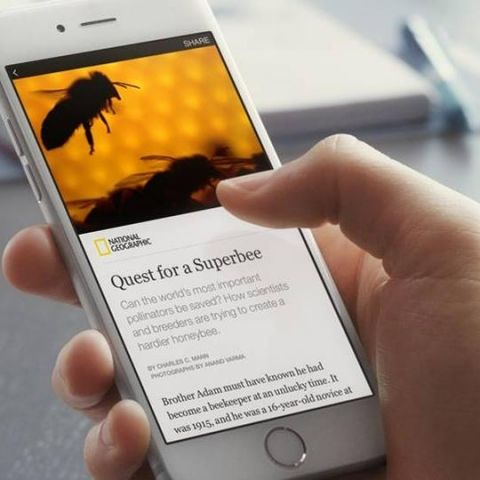 Facebook Instant Articles: the 5th estate?