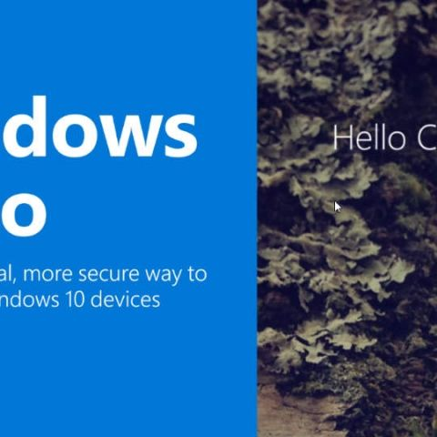 Windows Hello passes through identical twin facial recognition test