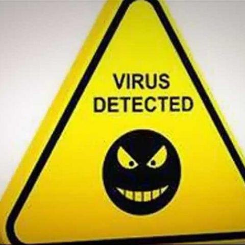 Beebone PC virus threatens Indian cyberspace