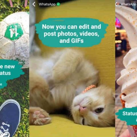 WhatsApp status feature made official, allows photos, videos and GIFs