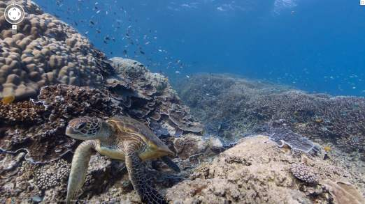 Google maps goes underwater adds coral reef panoramas digit google has partnered with the catlin seaview survey a major scientific study of the worlds reefs to make the images available to users of google maps gumiabroncs Image collections