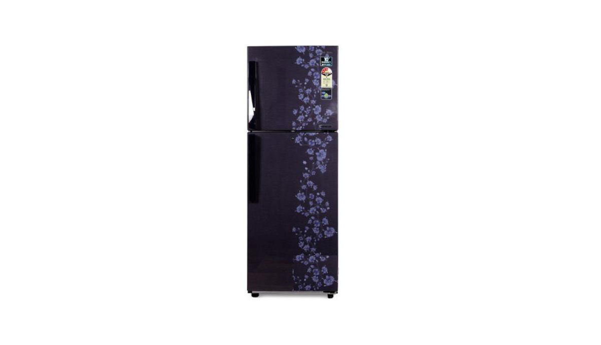 सैमसंग RT27HAJSAPX T 253 L Double Door रेफ़्रिजरेटर