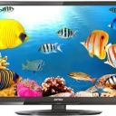 Compare Intex LED 2410HD vs Videocon 22 inches HD Ready LED TV